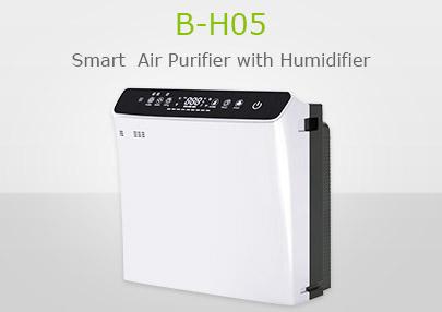 B-H05
