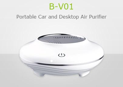 B-V01